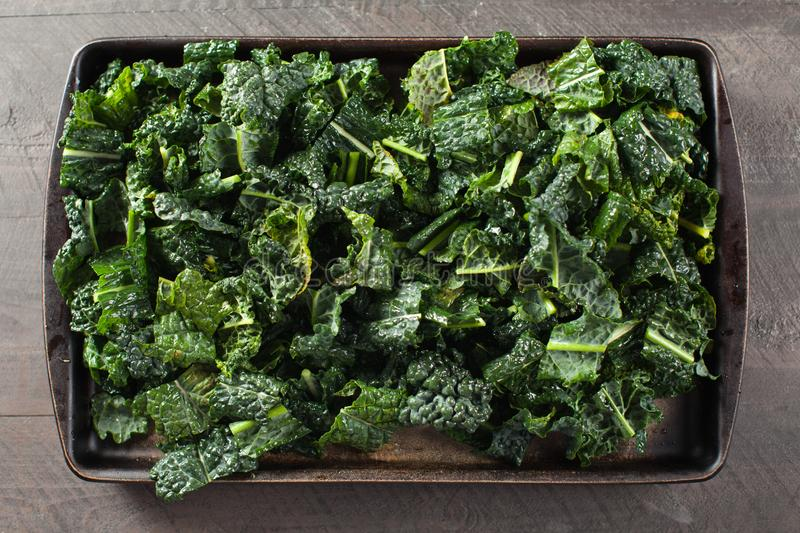 Kale pieces prepared for oven horizontal shot. Green kale pieces on stone prepared with olive oil for the oven horizontal shot royalty free stock images