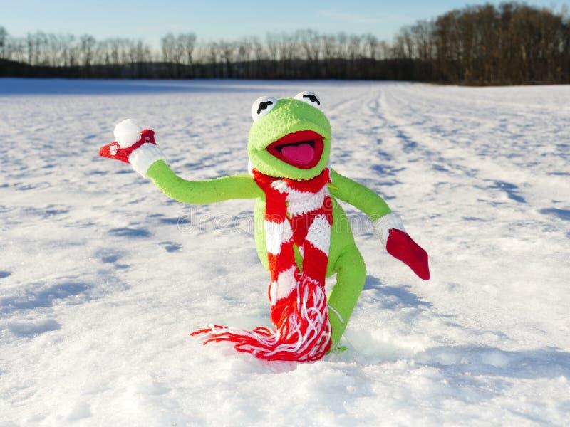 Green Kermit the Frog on White Snow royalty free stock photos