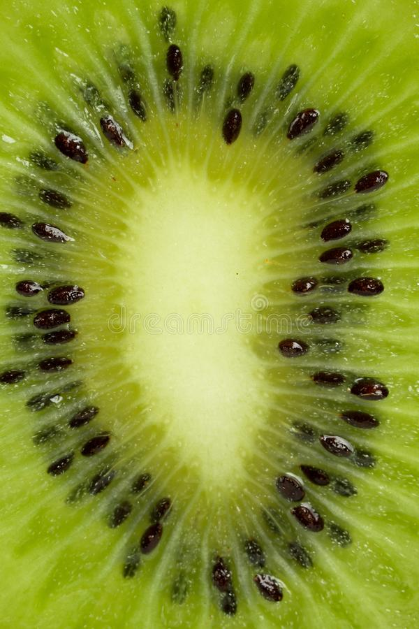 Kiwi slices and light stock photo