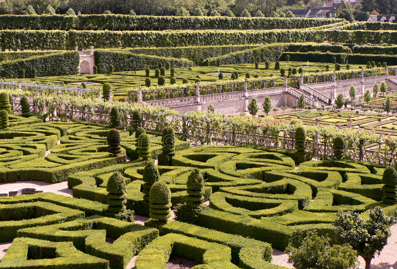 Green Labyrinth royalty free stock photography