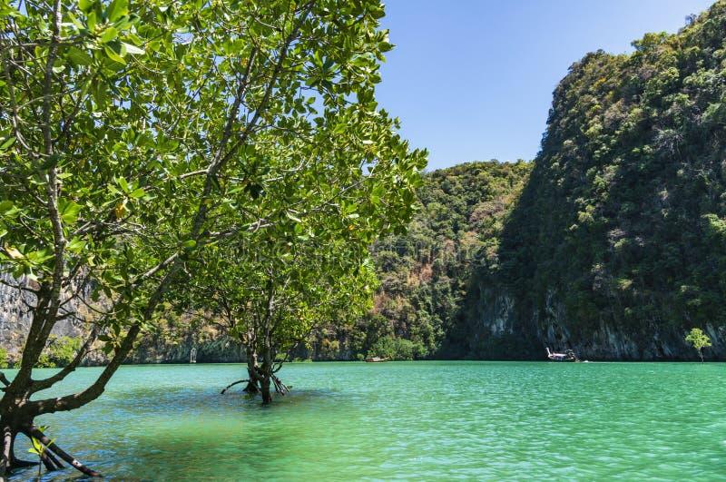 Green lagoon at Hong island. Krabi, Thailand royalty free stock images