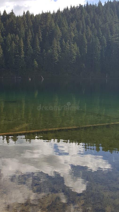 Green lake royalty free stock photo