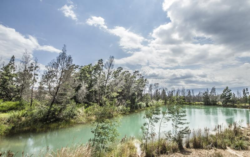 Green lake with a blue sky and green trees stock images