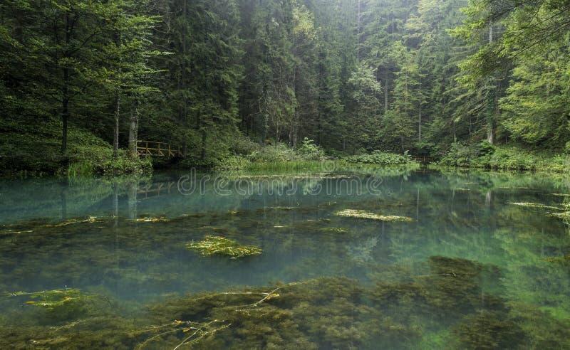 Green Lake, Gorski Kotar, croatia royalty free stock images