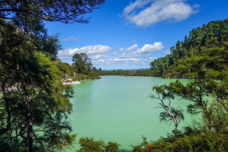 Green lake in Waiotapu, Rotorua, New Zealand stock image