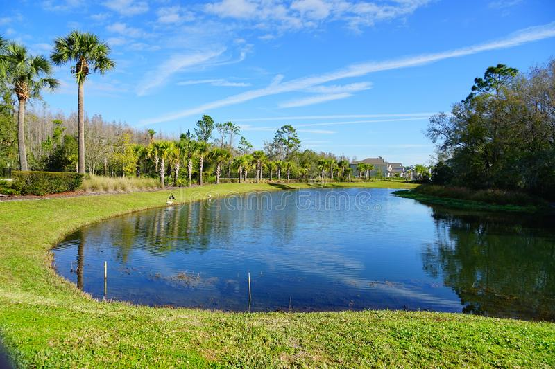 Green lakeblue. A blue lake, taken in Tampa, florida royalty free stock image