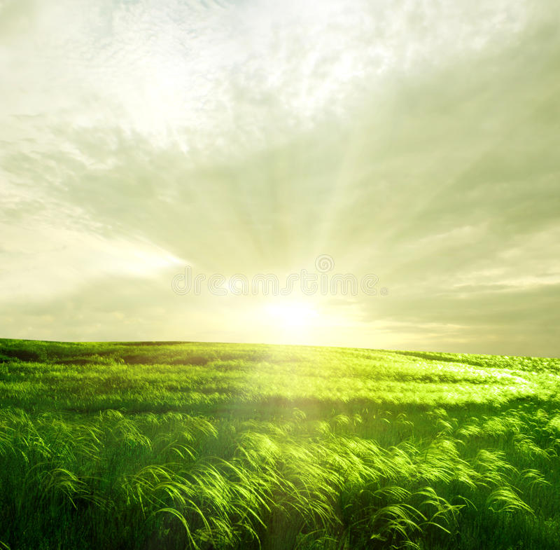Free Green Landscape Stock Images - 31575754