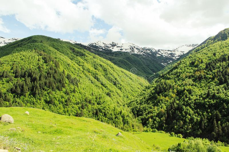Green landscape with alpine meadow and snowcapped mountain peak in the Caucasus in Georgia royalty free stock photo