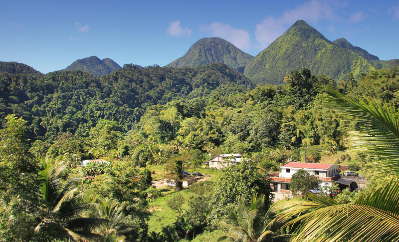Green landscape from the Island Dominican Republic. stock photography