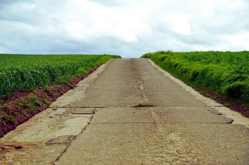 Rural road in the middle of green fields or grassland royalty free stock photos
