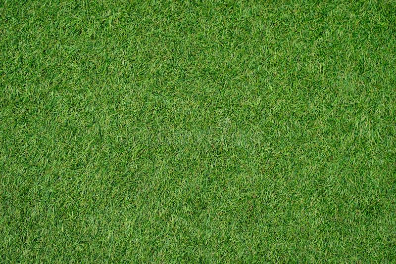 Green lawn for background.Green grass background. texture. top view. Green lawn for background.Green grass background. texture. top view high resolution royalty free stock images