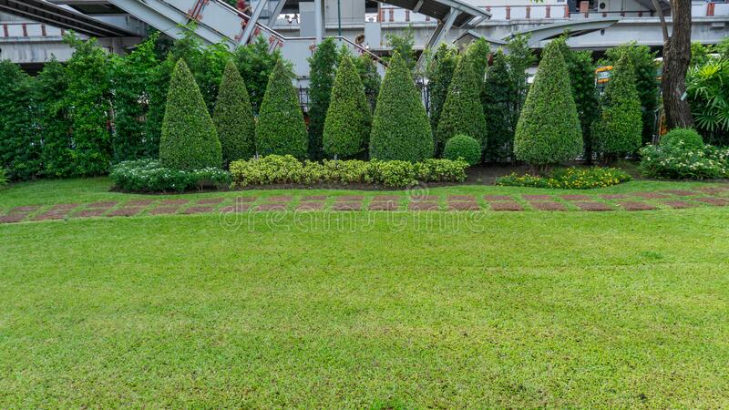 Green lawn garden with brown walkway in Chatuchak park beside Bts train station on Phaholyothin road, landmark and Famous public. Park in Bangkok for people royalty free stock image