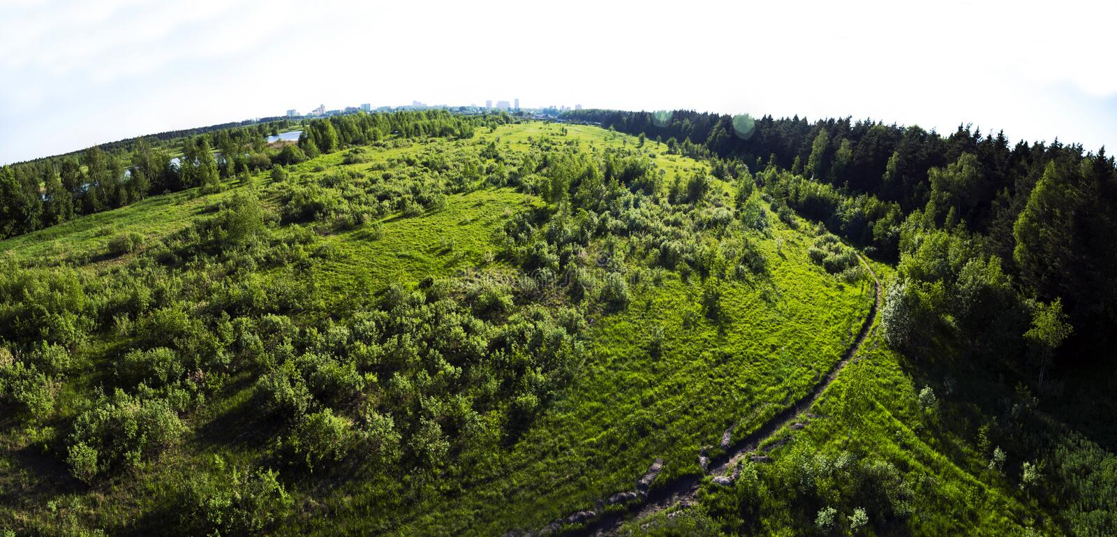 Green lawn little trees grass. Place deforestation for building construction. Nature environment top view from above royalty free stock photography