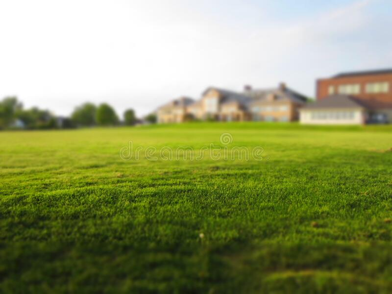 Green Lawn Outside Home Free Public Domain Cc0 Image