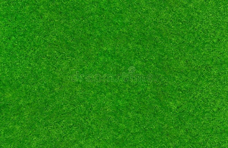 Green lawn texture. A fresh green lawn texture royalty free stock photos