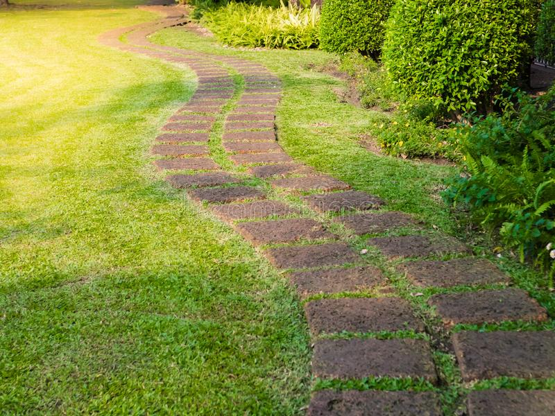 green lawns with bricks pathways, A fresh green lawn in the park, landscape design stock photos