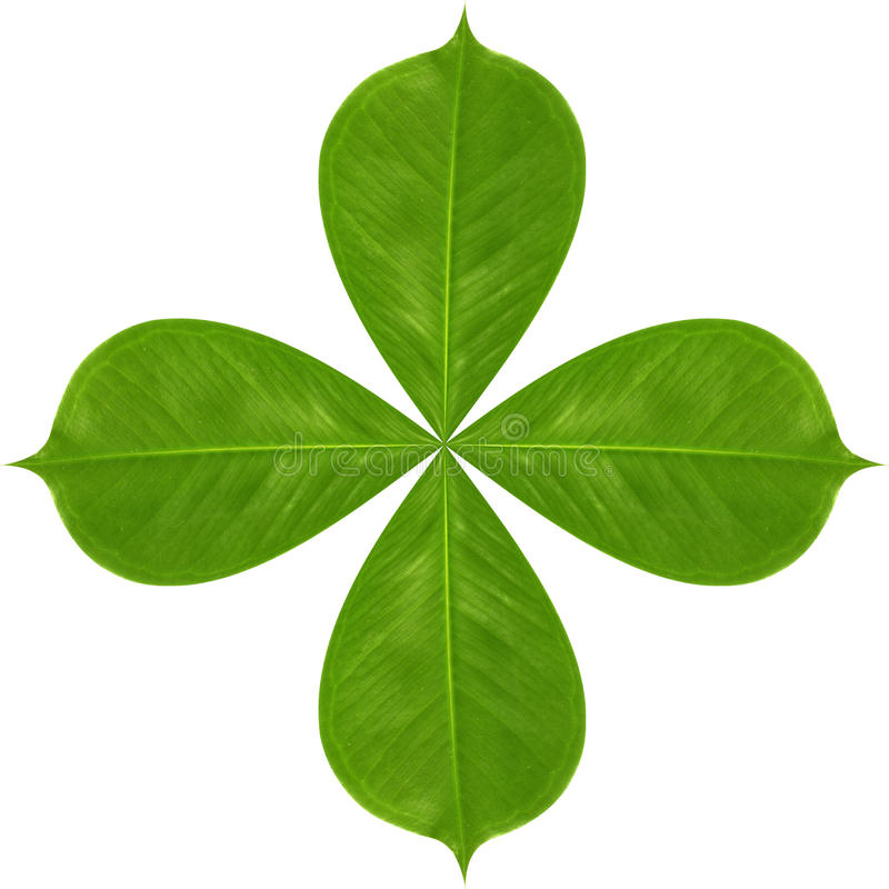 Download Green Leaf Royalty Free Stock Image - Image: 22147196