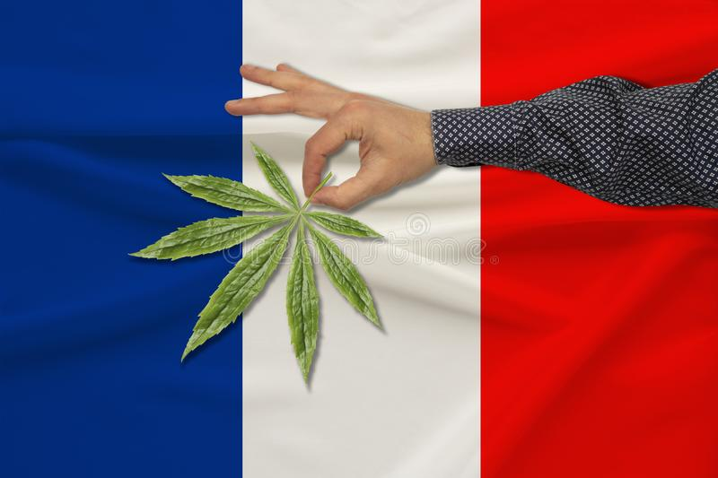 Green leaf of cannabis in a man's hand against the background of a colored state flag, the concept of legalization, trade, stock photos