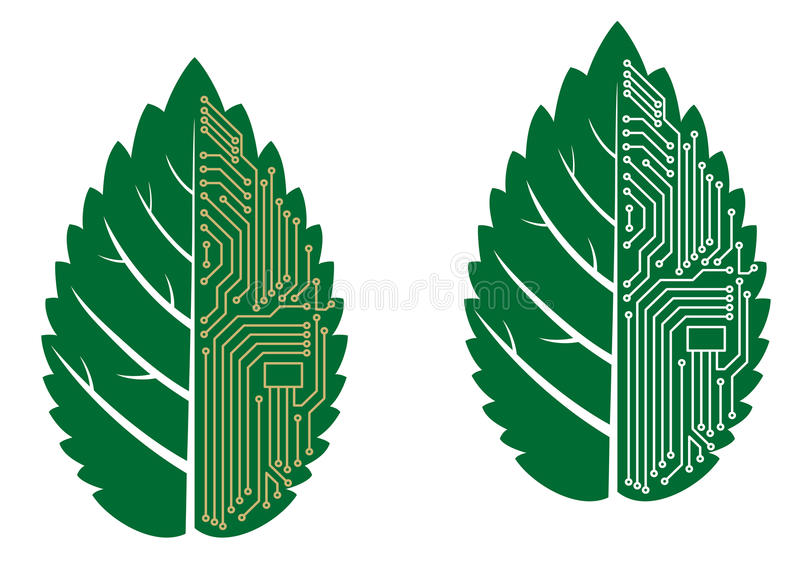 Green leaf with computer and motherboard elements. For technology concept royalty free illustration