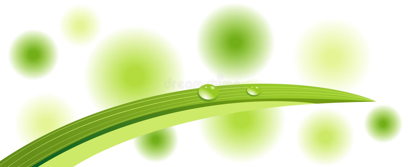 Green leaf with dewdrops. Isolated royalty free illustration