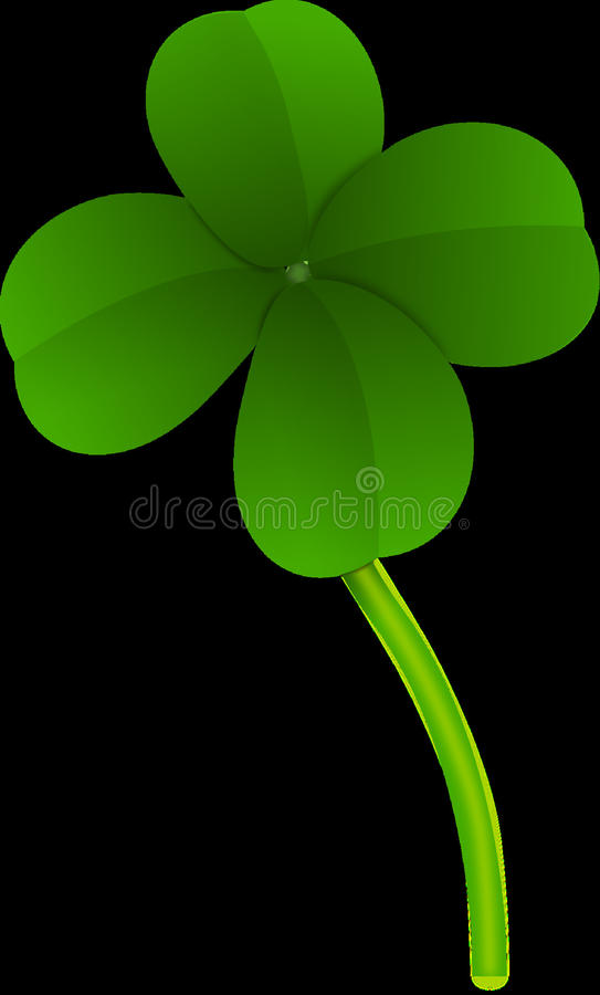 Green, Leaf, Flora, Flower stock images