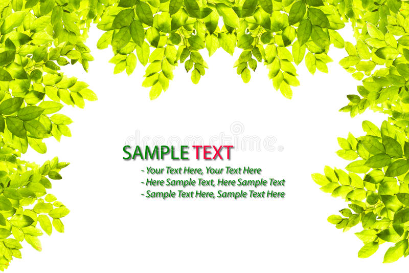 Green leaf frame isolated royalty free illustration