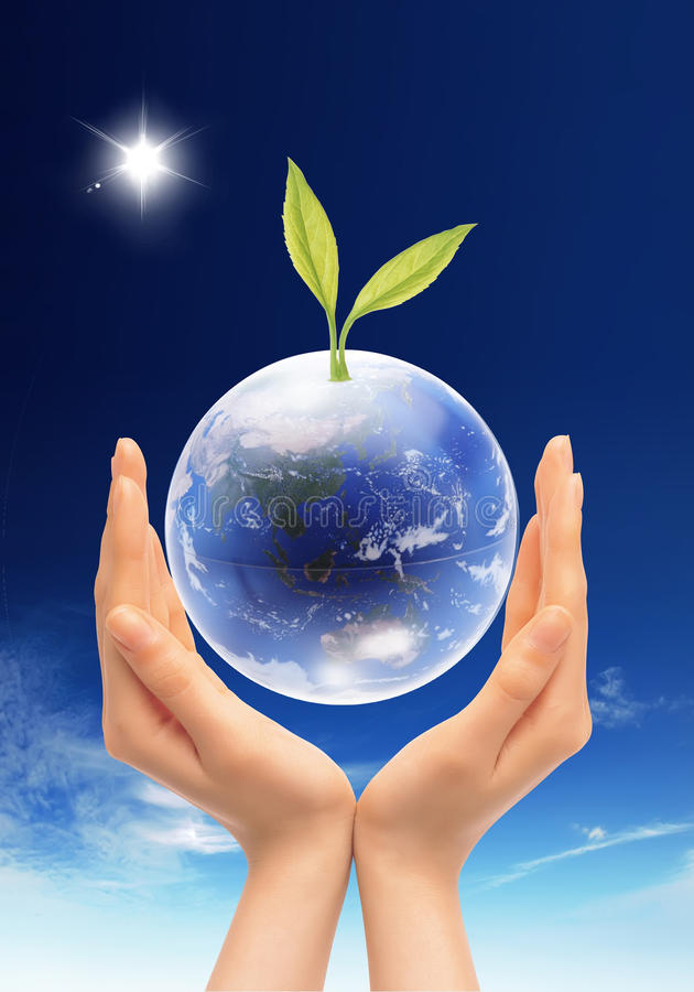 Download Green leaf and globe stock image. Image of environment - 10731731