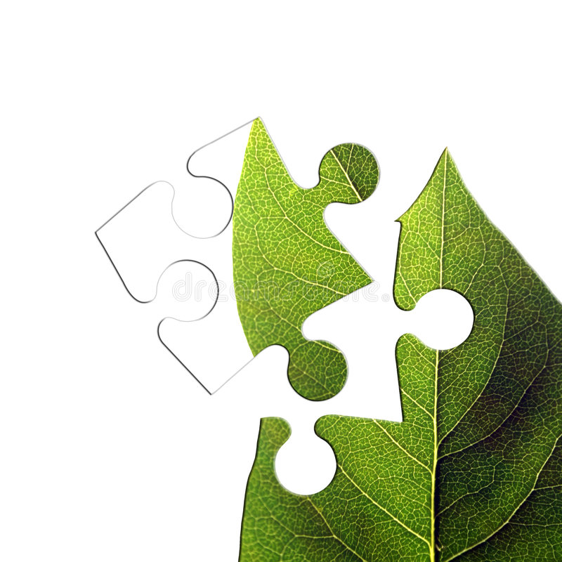 Green leaf jigsaw stock photography
