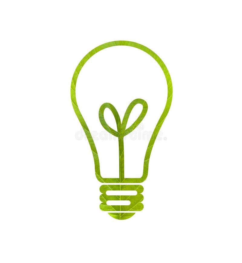 Download Green Leaf Light Bulb Stock Image Of Lamp Global