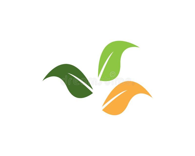 Green leaf nature element.  vector illustration