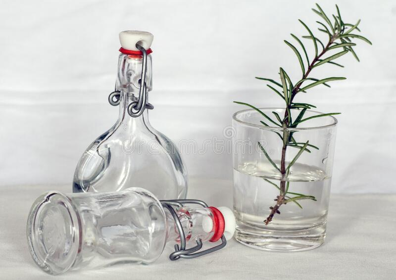 Green Leaf Plant on a Drinking Glass and Bottles royalty free stock photos