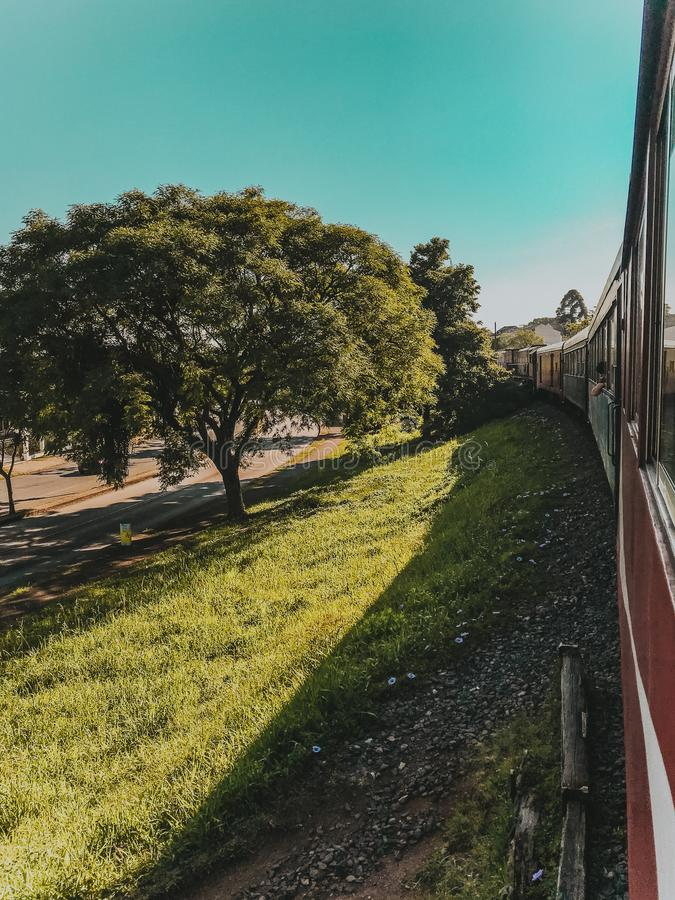 Green Leaf Tree Near Red Train at Daytime royalty free stock photo