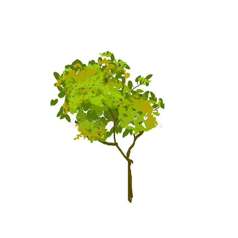 Green leaf tree silhouette watercolor style brush on white background.  stock illustration