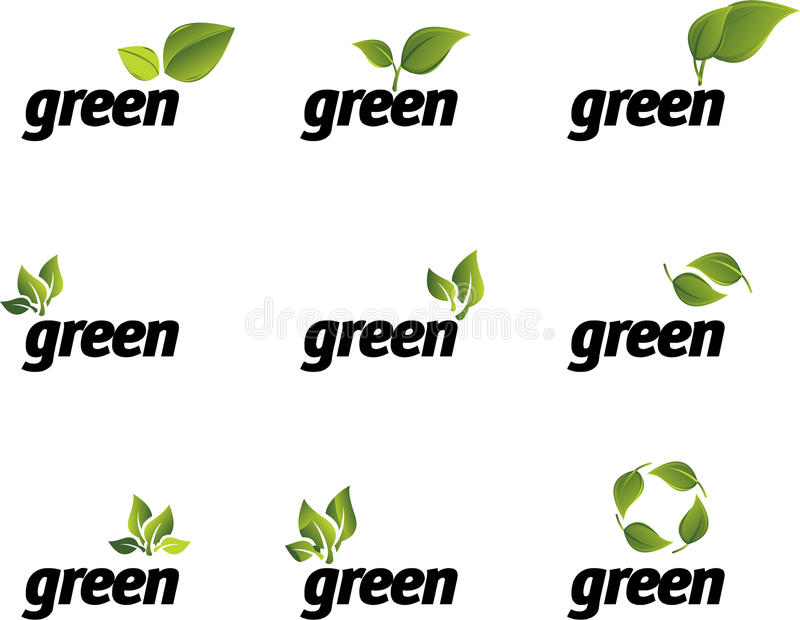 Download Green leaf vector set. stock vector. Image of conservation - 9936646