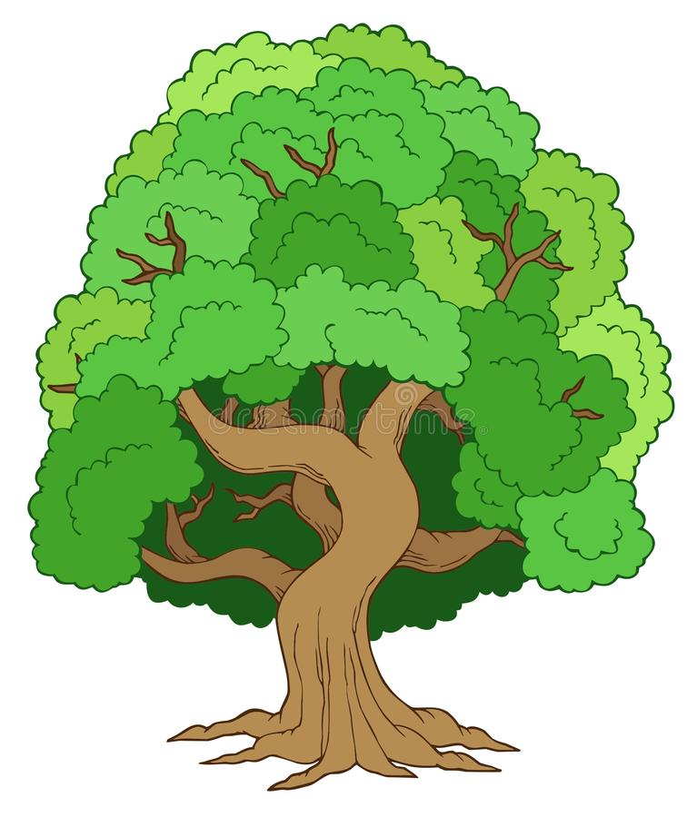 Download Green leafy tree stock vector. Image of draw, botanical - 15614771
