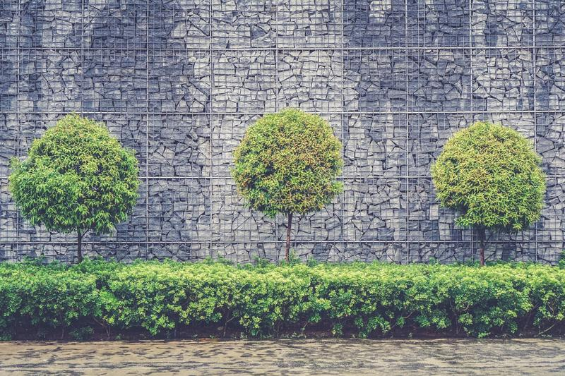 Green Leafy Trees In Front Of Gray Brick Wall Free Public Domain Cc0 Image