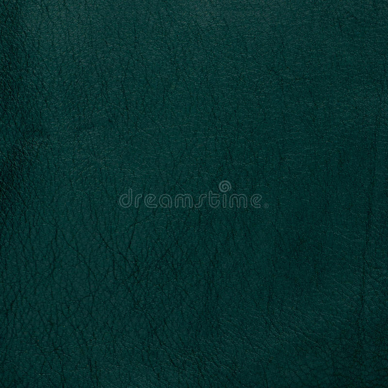 Download Green leather stock photo. Image of cracklier, dark, copy - 35035634
