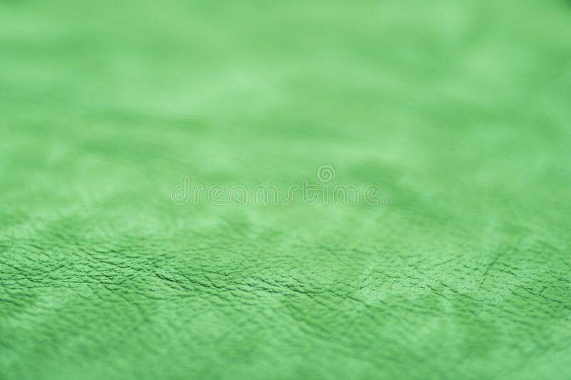 Green leather for manufacturing of shoes stock photo