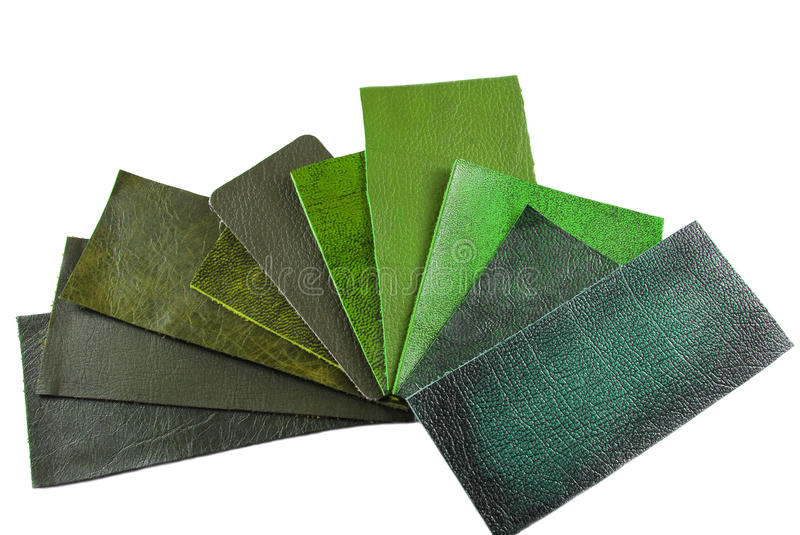 Green leather sampler. For interior royalty free stock image