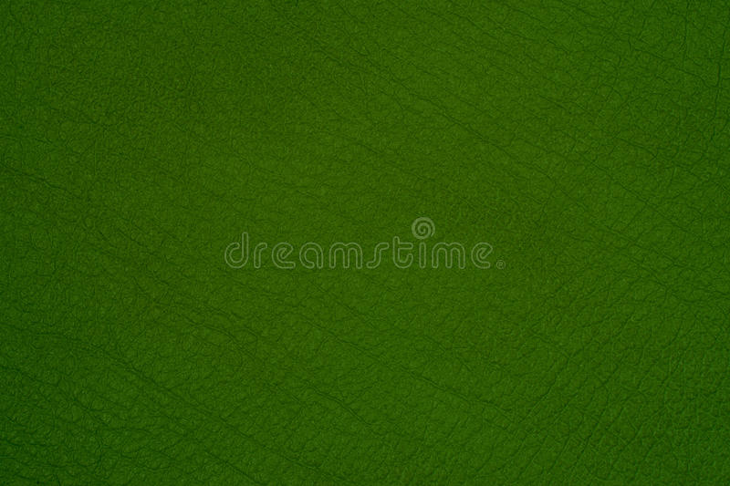 Green leather texture closeup,. Useful as background royalty free stock image