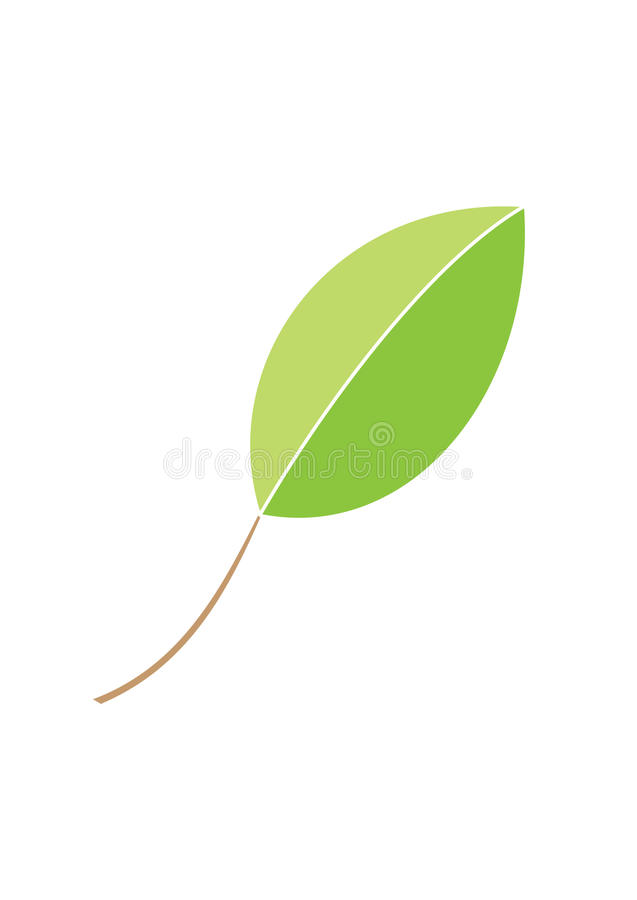 Green leave. Illustration of green leave isolated on white vector illustration