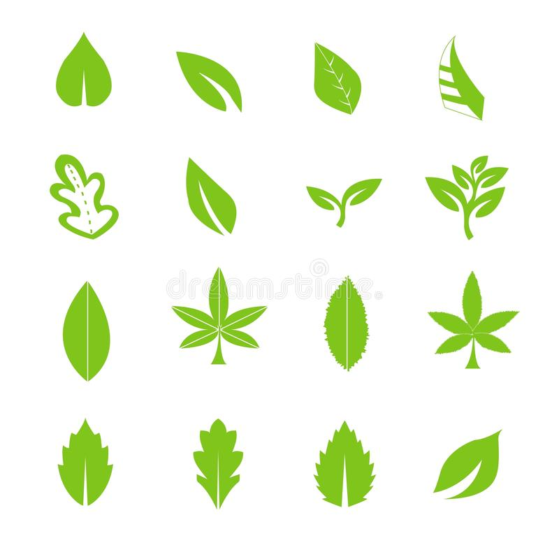 Green leave icons set stock illustration