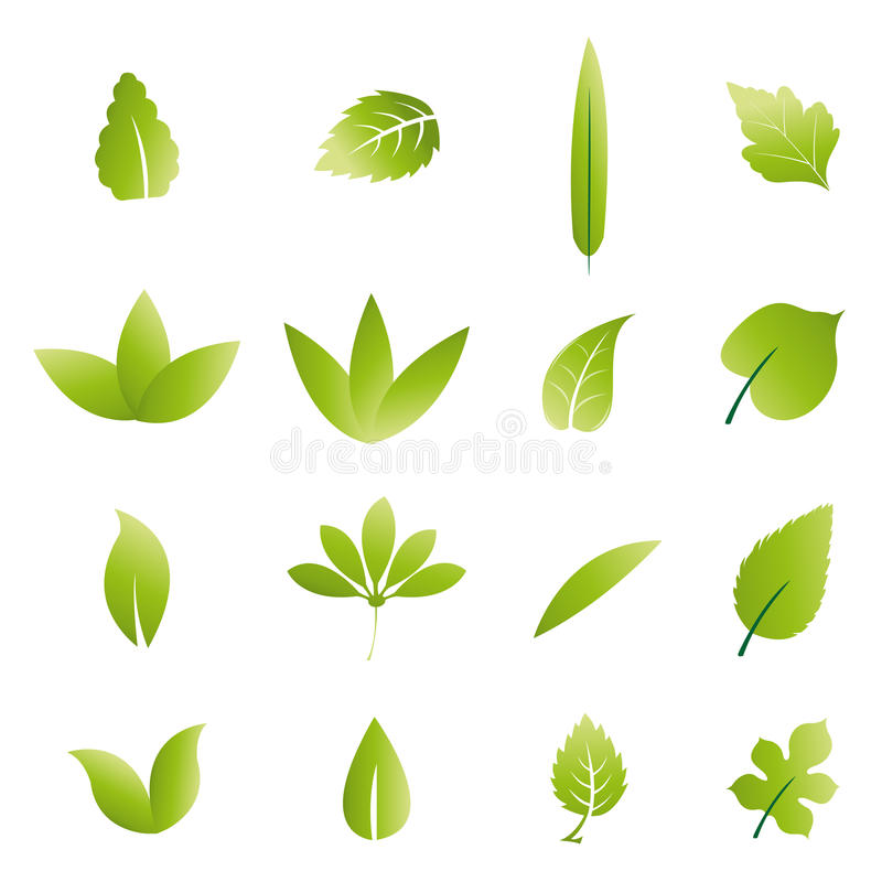 Green leaves royalty free illustration
