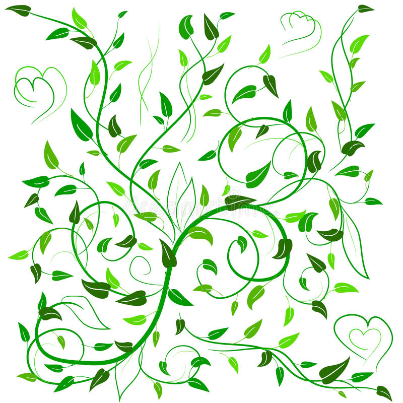 Green leaves with abstract swirls and heart. Green leaves with abstract swirls, leaves and heart on a white background. Can be used as a background, decor vector illustration