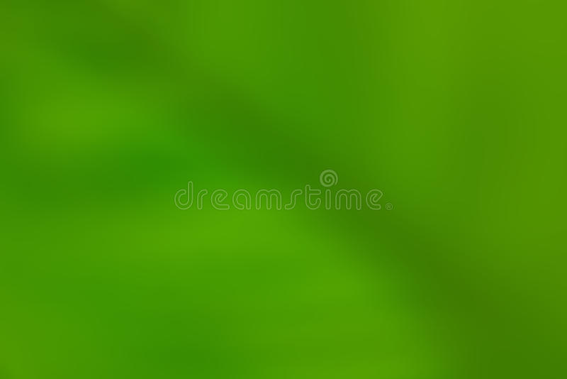 Green leaves as abstract background.  royalty free stock photos