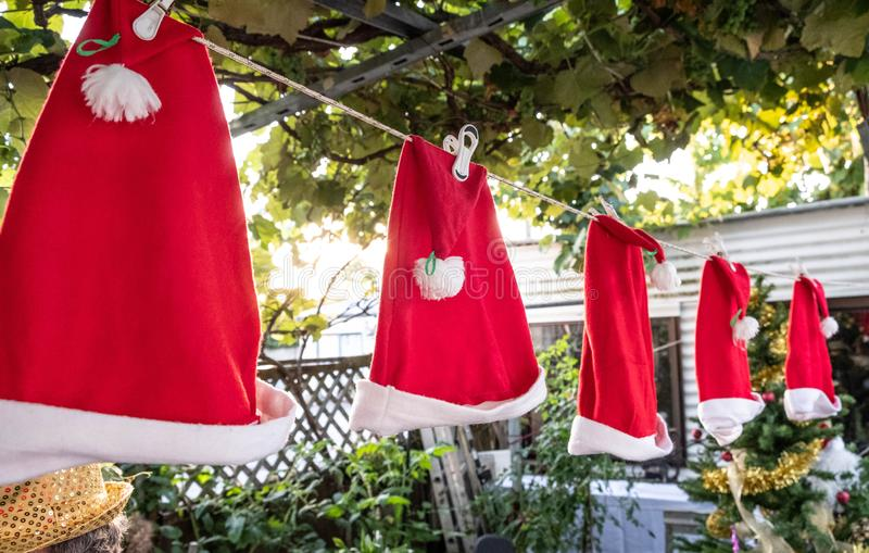 Green leaves Christmas background with red Santa hats on a clothes line. Festive season. summer. New Zealand royalty free stock photo