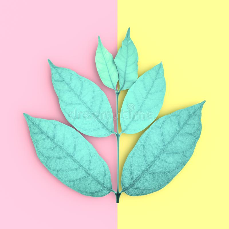 Green leaves and copy space on pink and yellow background stock illustration