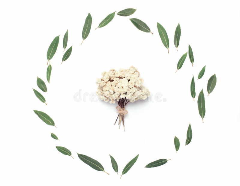 Green leaves and decorative small bouquet of dried flowers royalty free stock photo