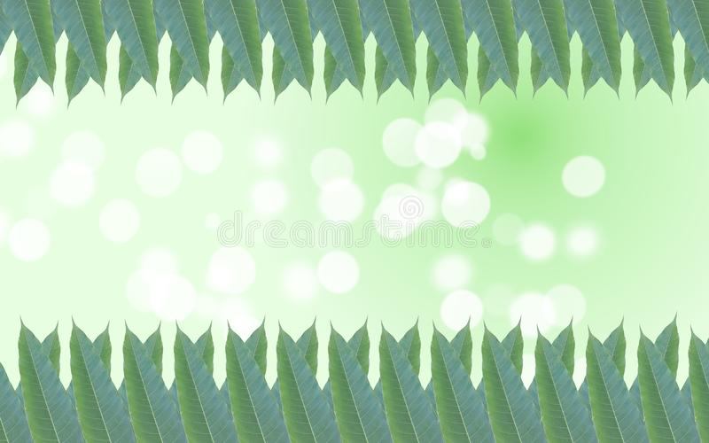 Green leaves frame in the background of wonderful bokeh.  stock images