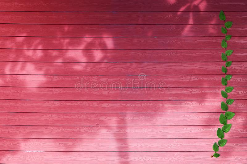 green leaves of nature border and shadow tree on red wood royalty free stock photo